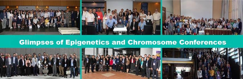 Epigenetics Conference 2019 - Epigenetics Congress 2019
