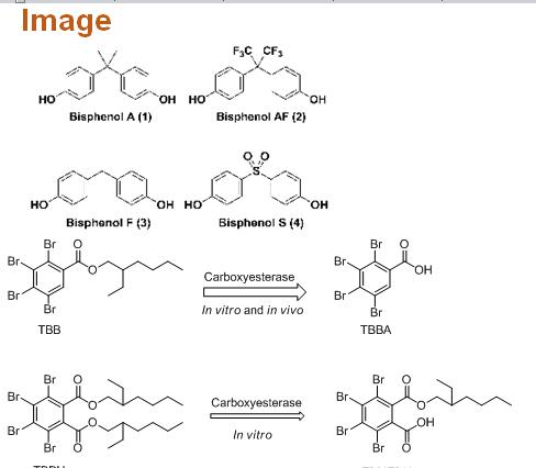 Bisphenol A analogs and new brominated flame retardants: Do