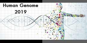 12th World Conference on Human Genomics and Genomic Medicine , Abu Dhabi,UAE