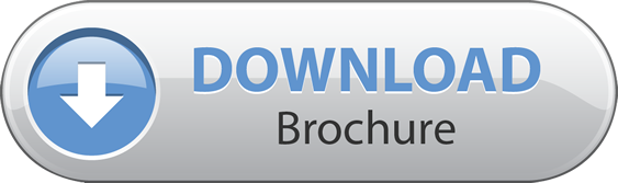 Image result for download brochure