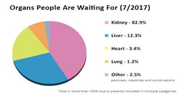 Organ Transplantation Conferences 2019 | Artificial Organs
