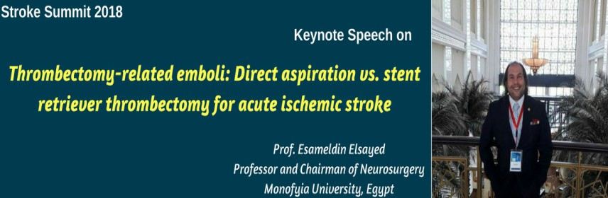 - Stroke Summit 2018