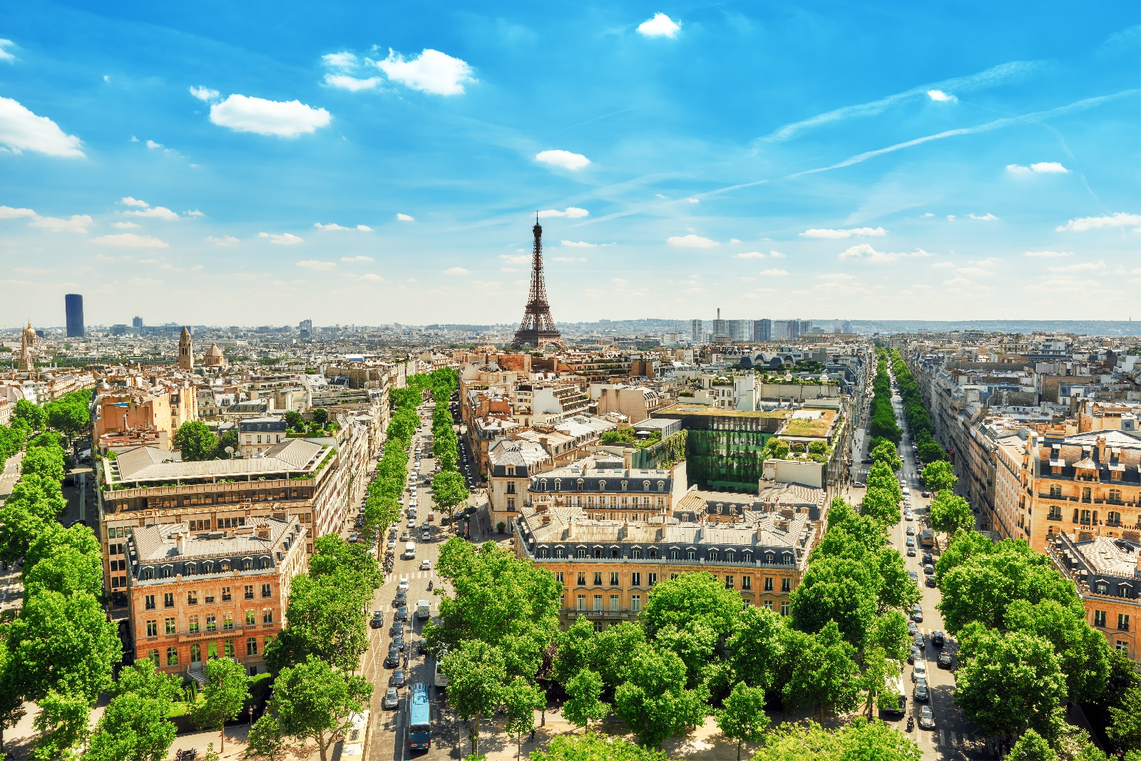 Biotechnology Congress 2019 - Paris ,France
