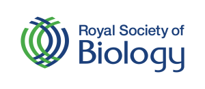 RSB Logo - Transparent Background
