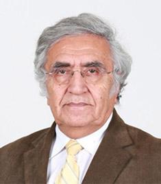 Ahmet Fahri Ozok