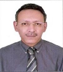 Ehab M. Esheiba