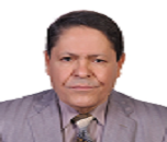 Nagy Abdulsamee Abdulhameed