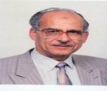 Fadel M Ali