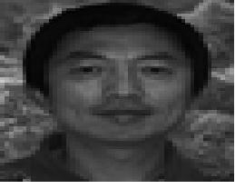 Ruohong Sui