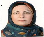Mojgan Khodadadi