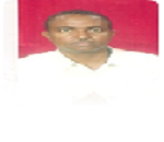 Hassan Abdalla Almahy Dafalla