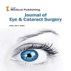 journal image, eye surgery journal, logo of retina journal