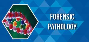 Histopathology and Cytopathology Conferences | Congresses | Meetings
