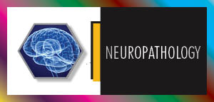 Neurology Conferences | Neuroscience Conferences | Neurology