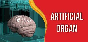 Artificial Organ