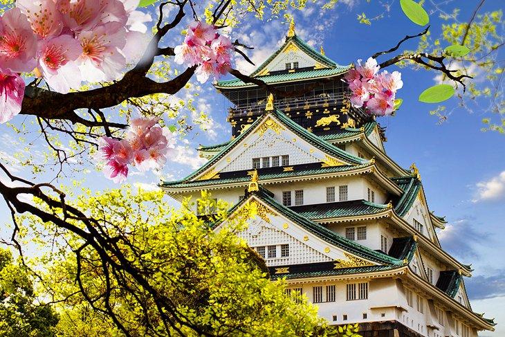 Euro Otorhinolaryngology 2020 - Osaka ,Japan