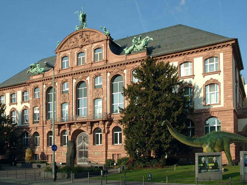 Dermatology 2018 - Frankfurt ,Germany