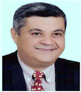 AHMED N. GHANEM