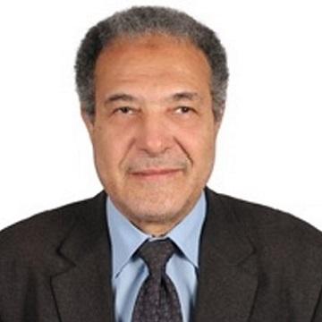 Ahmed G . Hegazi