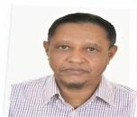 Fathelrahman  Ahmed