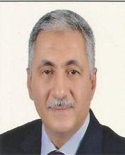 Mohamed A. Eldesouky