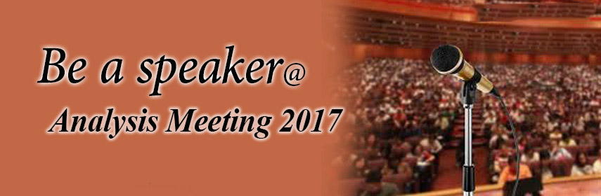 Analysis Meeting 2017