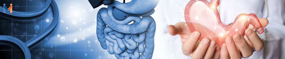 Gastroenterology 2018